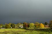 9th Oct 2020 - Rain rain go away