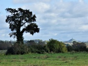 11th Oct 2020 - Across the Levels