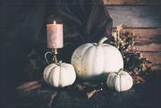 11th Oct 2020 - Furbished with Gourds