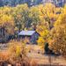 autumn barn by aecasey