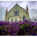 Lavender and Church..