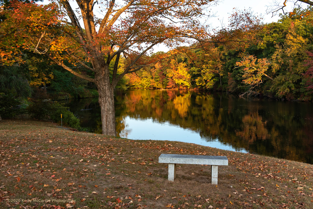 A nice spot to sit and enjoy your morning coffee... by mccarth1
