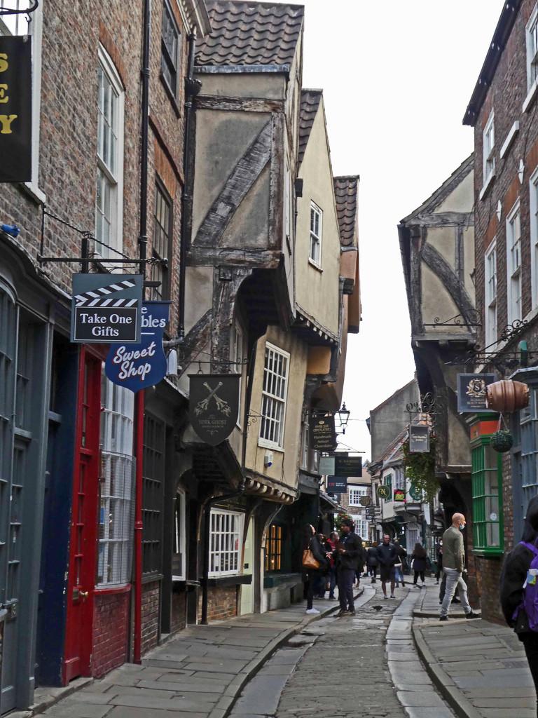 York - The Shambles by cmp
