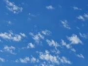 13th Oct 2020 - 20201013_173054 sky
