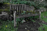 12th Oct 2020 - OLD BENCH