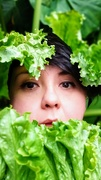 6th Oct 2020 - Fresh as lettuce