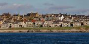13th Oct 2020 - Breiwick, Lerwick, Shetland