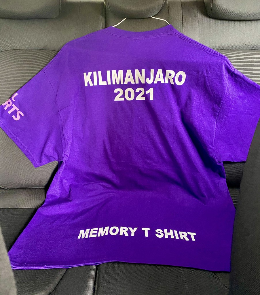 Memory T shirt.  by 365projectdrewpdavies
