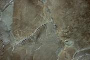 18th Jul 2020 - Wet Rock Texture