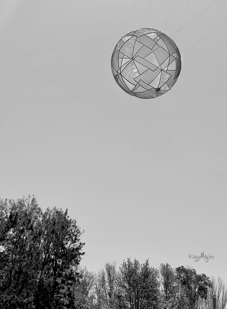 Home In The Sky by mazoo