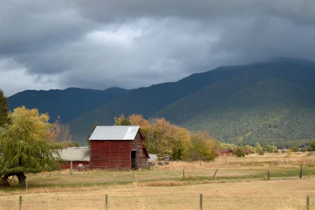 Autumn Landscape In Montana by bjywamer