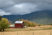 11th Oct 2020 - Autumn Landscape In Montana