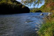 13th Oct 2020 - Nolichucky River - SOOC