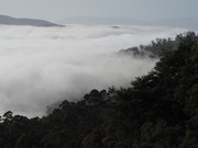 14th Oct 2020 - River Fog