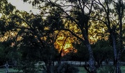 1st Oct 2020 - The Glow of Sunset
