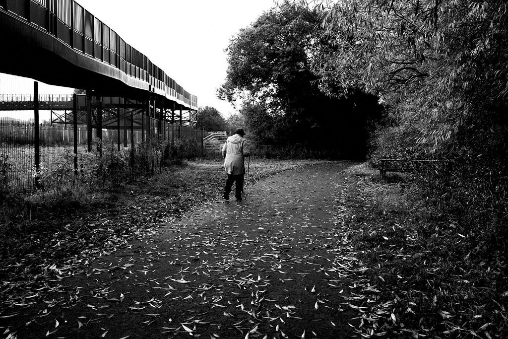 Walking 1 by allsop