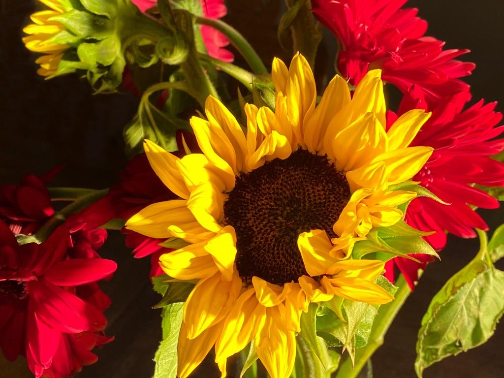 Farmers' Market Bouquet by shutterbug49