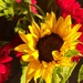 Farmers' Market Bouquet by shutterbug49