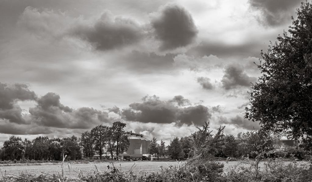 Modern Landscape 2 by vignouse