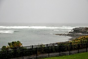 13th Oct 2020 - Rainy afternoon in Maine.....