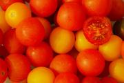 3rd Oct 2020 - Grape Tomatos - Red & Yellow
