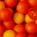 Grape Tomatos - Red & Yellow