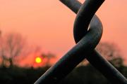 4th Oct 2020 - Sunset & Fence