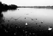 15th Oct 2020 - Kings Mill Reservoir Mansfield 1