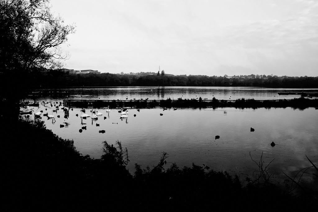 Kings Mill Reservoir Mansfield 2 by allsop