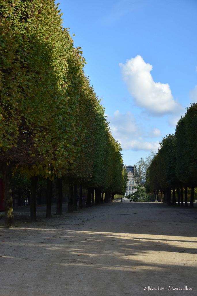 Tuileries garden  by parisouailleurs