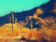 16th Oct 2020 - desert