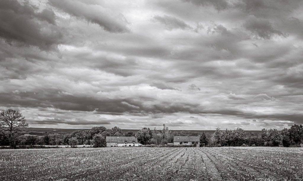 Traditional Landscape... by vignouse