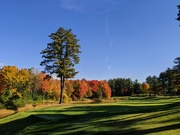 12th Oct 2020 - More Autumn Golf