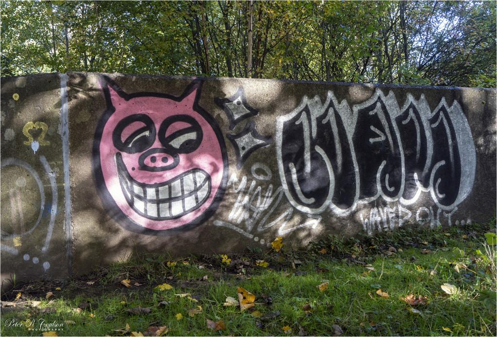 Graffiti by pcoulson