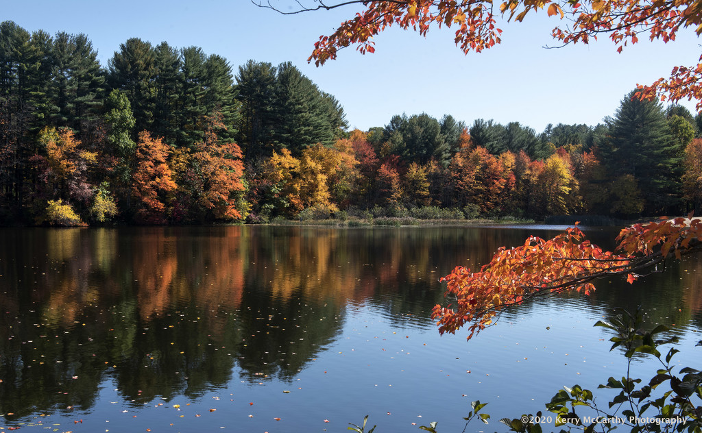 Autumn colors by mccarth1