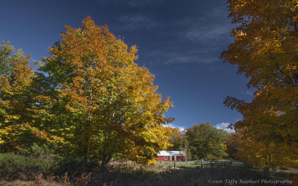 Autumn on the Farm by taffy