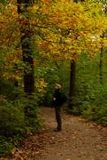 16th Oct 2020 - Enjoying Autumn