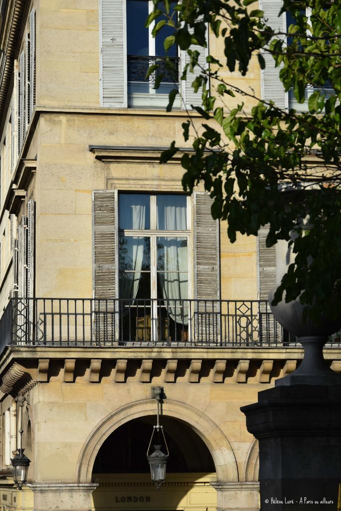 Rue de Rivoli by parisouailleurs