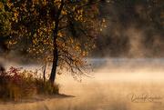 16th Oct 2020 - Sunrise & Fog