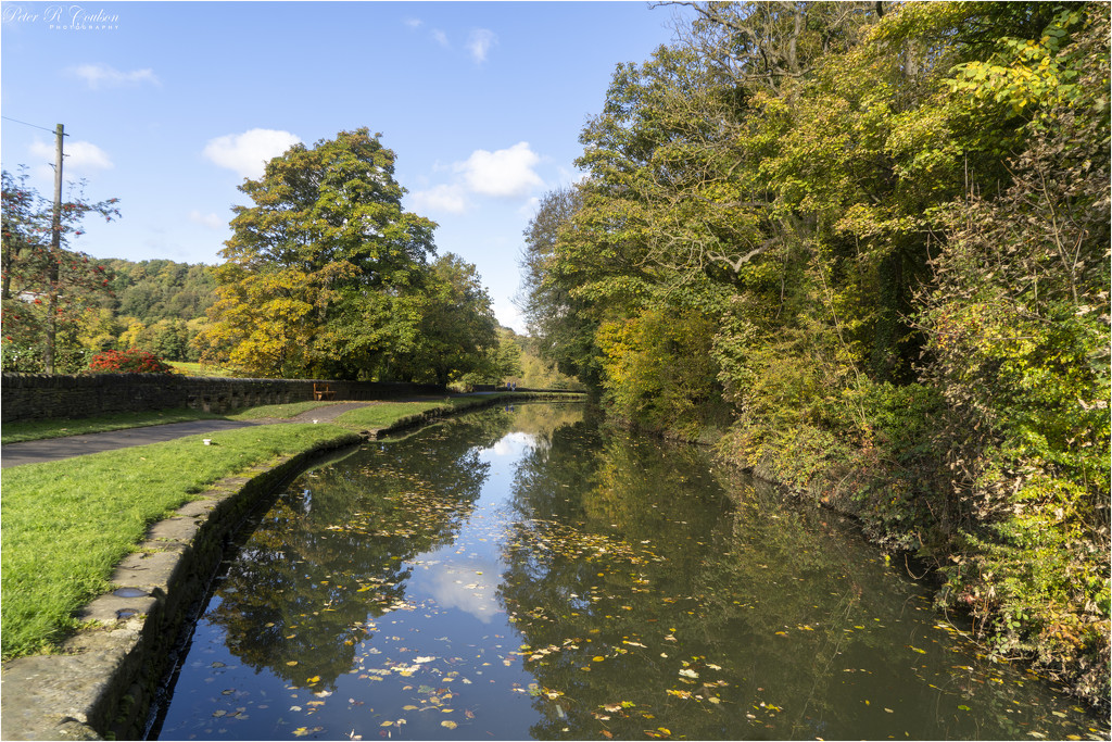 Colour on the Canal by pcoulson