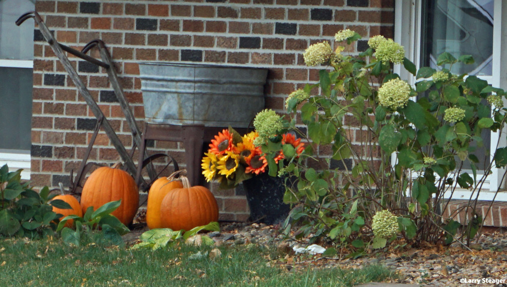 Fall display by larrysphotos