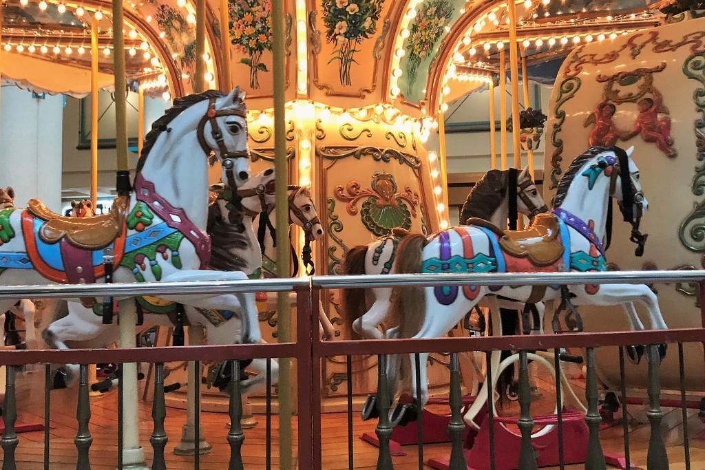 Pretty horses by tunia