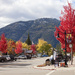 Autumn in Rossland