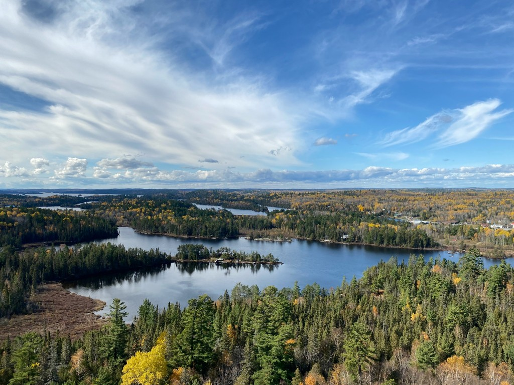 View from the Fire 🔥 Tower by radiogirl