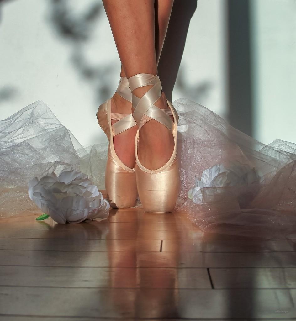 Feet by sherimiya