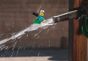 16th Oct 2020 - (Day 246) - Making a Splash