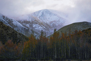 17th Oct 2020 - Spring snow in the mountains