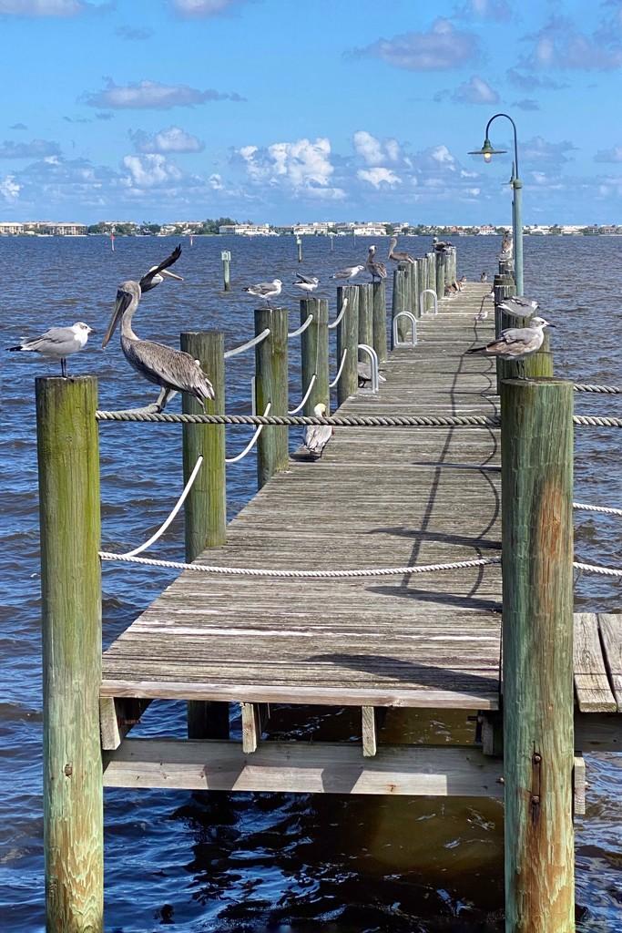 Jensen Beach, Fl by joesweet