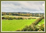 17th Oct 2020 - Autumn Landscape
