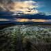 Kilpatrick Hills by iqscotland